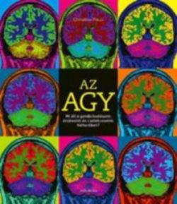 Az agy - Mi áll a gondolkodásunk
