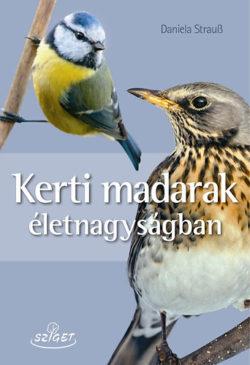 Kerti madarak életnagyságban - Daniela Strauβ
