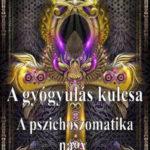 A gyógyulás kulcsa - A pszichoszomatika nagy könyve - Késmárki László