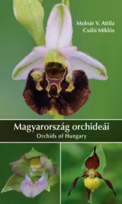 Magyarország orchideái - Molnár V. Attila